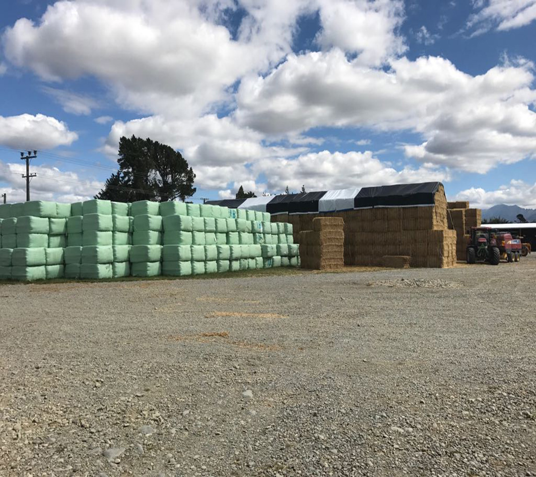 Green Silage Film